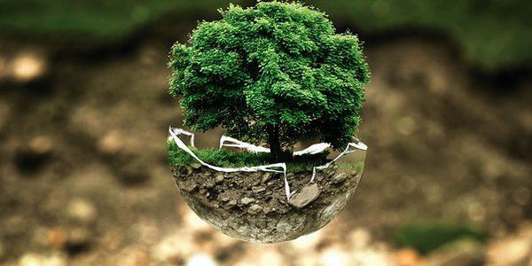 Sistema Gestione Ambiente secondo la norma ISO 14001