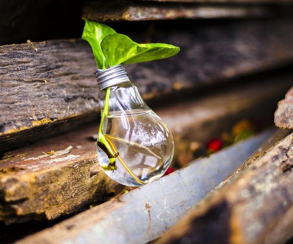 La gestione dei rifiuti in azienda – Aggiornamento RSPP/ASPP