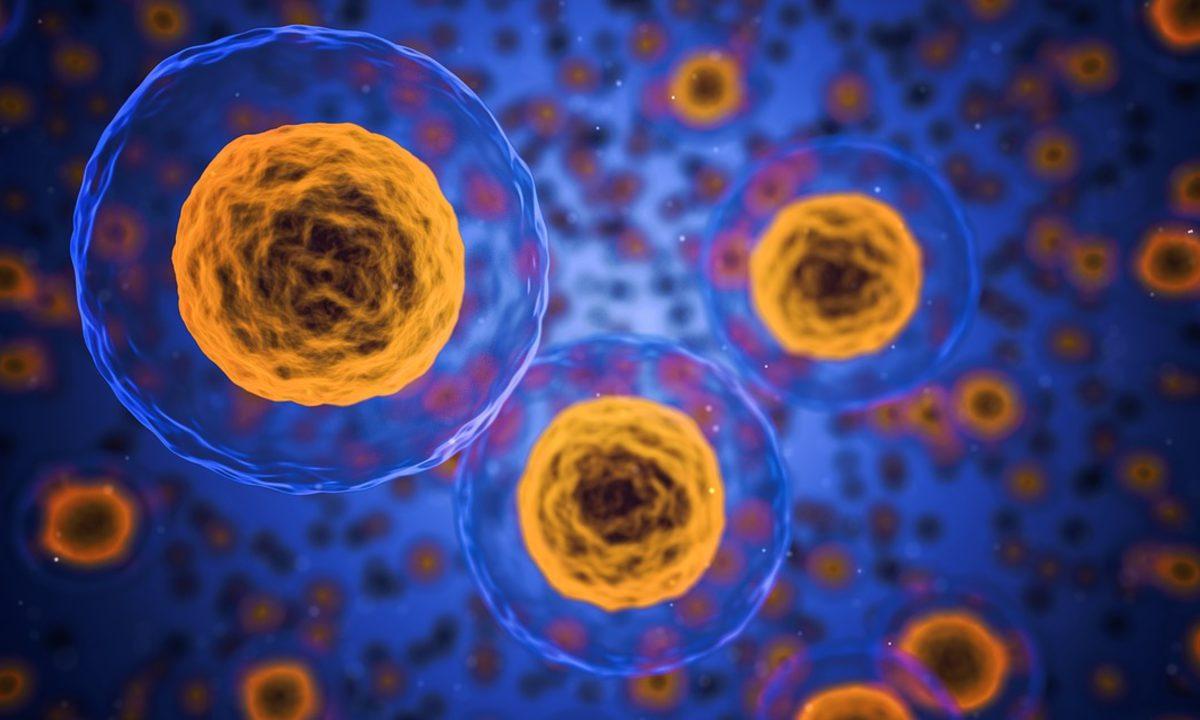 Direttiva Europea sugli agenti cancerogeni e mutageni