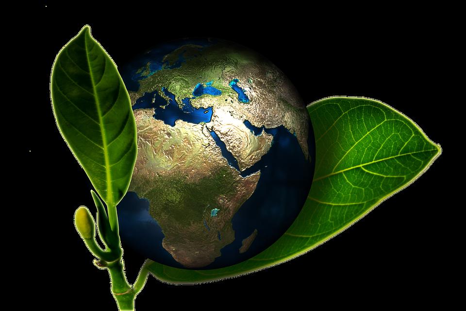 Green Week - festival della green economy